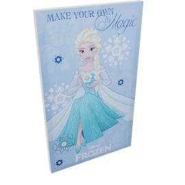 Disney Frozen Movie Poster Wall Canvas - 30x50 cms