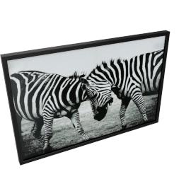 San Diego Zebra Framed Picture - 60x3.7x90 cms