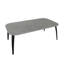 Organic Oval Table, Black