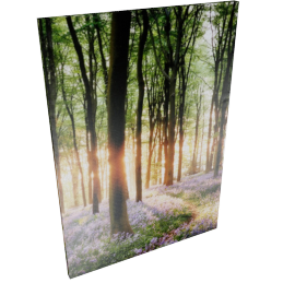 Birch Beauties Wall Art - 70X3X100 cms