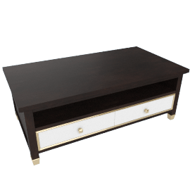 Adelina 2-Drawer Coffee Table