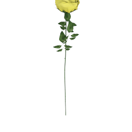 Real Touch Rose Stem 71 cms, Yellow