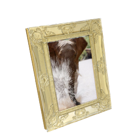 Cirque Photo Frame - 5x7 Inch, Gold