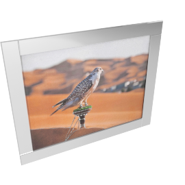 Falco Mirror Framed Picture - 96x76 cms