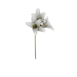 Single Amaryllis Spray, White