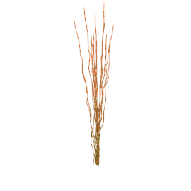 Decorative Willow Arrangement