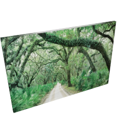Main Street Picture Frame - 24x35x1 inches