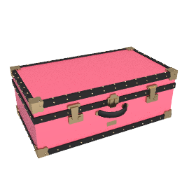 Attache Trunk, Pink