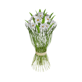 Daisy and Grass Bouquet 34 cms