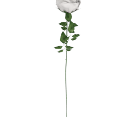Real Touch Rose Stem 71 cms, White