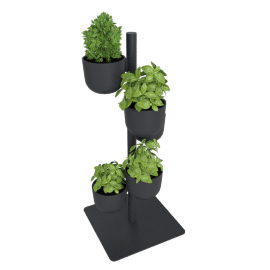 Story Planter, Coal