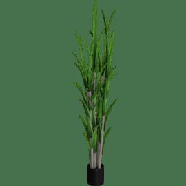 Sugarcane Pot 183 cms