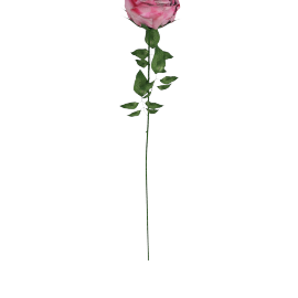 Real Touch Rose Stem 71 cms, Pink