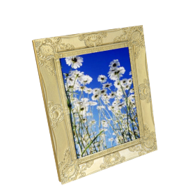 Cirque Photo Frame - 8x10 Inch, Gold