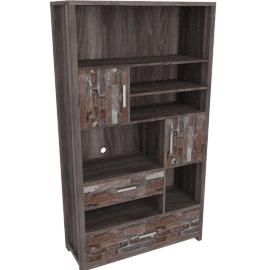 Salvage Bookcase