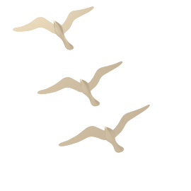 Birds Wall Decor - Set of 3