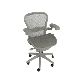 Aeron® Chair - Lumbar Support
