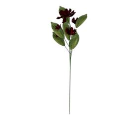 Poppy Spray, red