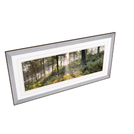 Mike Shepherd - Woodland Vision 2 Framed Print
