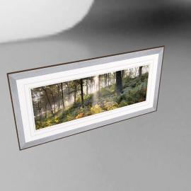 Mike Shepherd - Woodland Vision 2 Framed Print