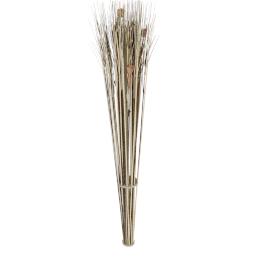 Buri Bundle 150 cms
