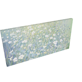 Catherine Stephenson - Hazy Daisies Print on Canvas, 60 x 120cm