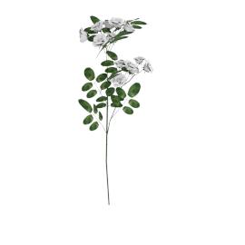 Ranunculus Spray