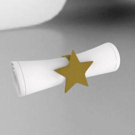 Hammered Star Napkin Ring, Gold Finish